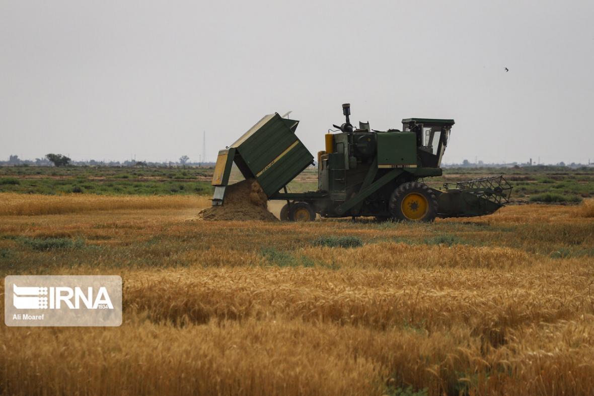 خبرنگاران پرداخت بیش از 128 هزار میلیارد ریال تسهیلات در بخش کشاورزی