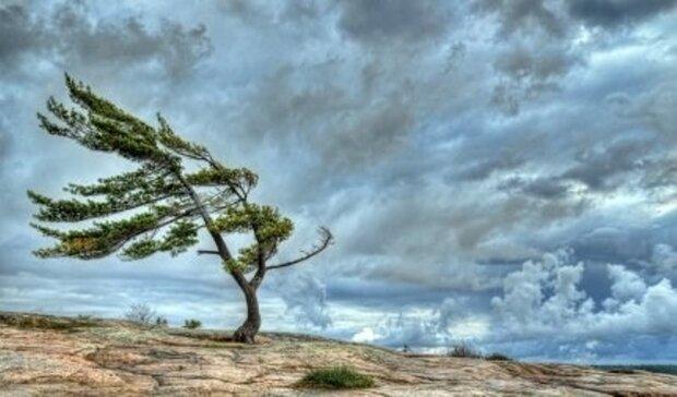 رگبار، رعد و برق و وزش باد شدید پدیده جوی غالب تا خاتمه هفته