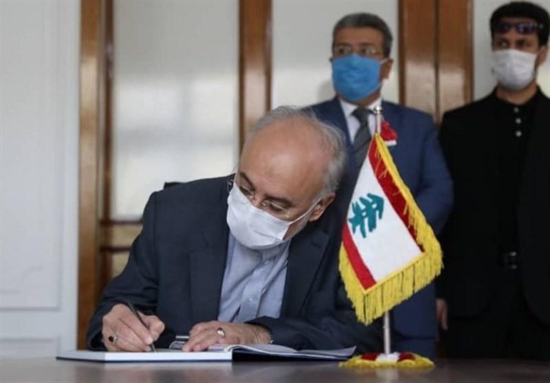 صالحی در دیدار با سفیر لبنان: حادثه بیروت دل همه ما را مجروح کرد
