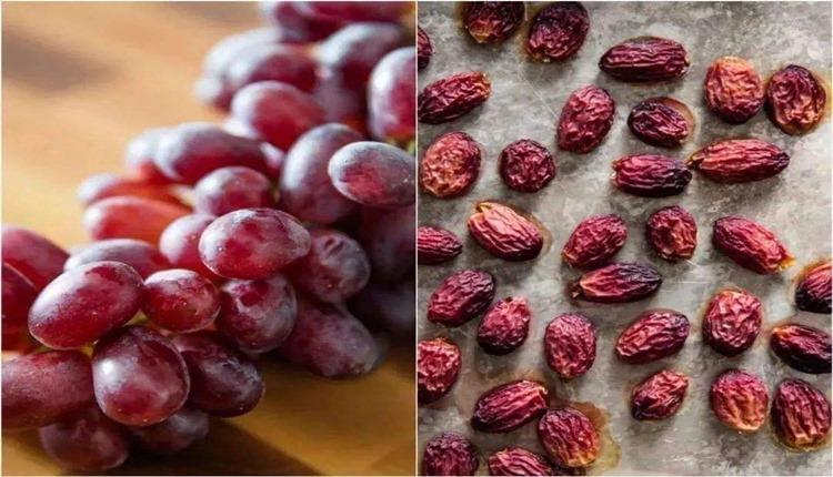3 روش خشک کردن انگور در خانه (کشمش خانگی)
