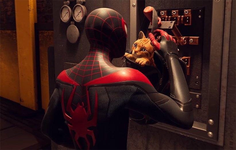 گربه ی عنکبوتی در Spider-Man: Miles Morales را ببینید