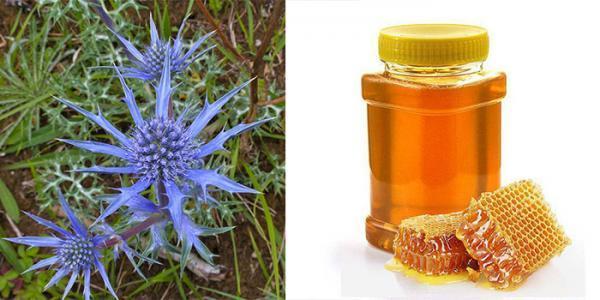 خواص عسل زولنگ و فواید آن برای سلامتی