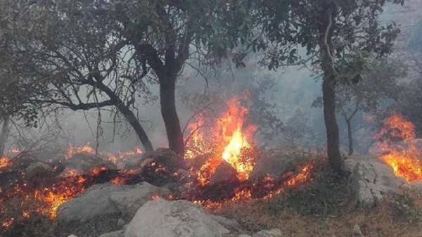 کوه های دهستان منگشت باغملک در حصار آتش، دلیل حادثه معین نیست